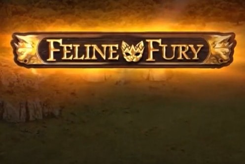 feline fury (play'n go) slot